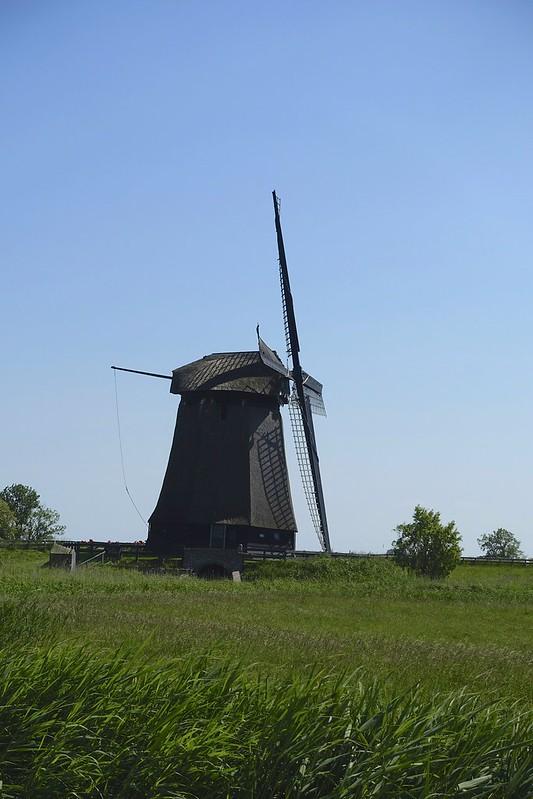netherlands 56