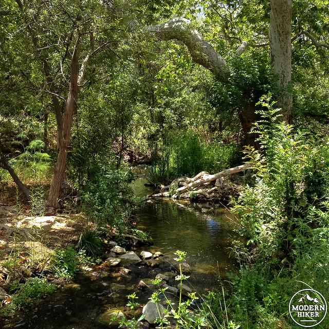 wildwood-park-35