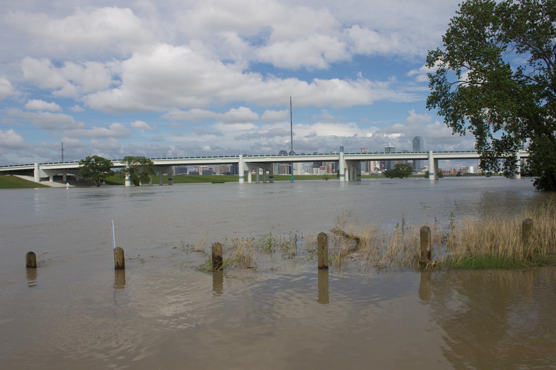 Flood 75