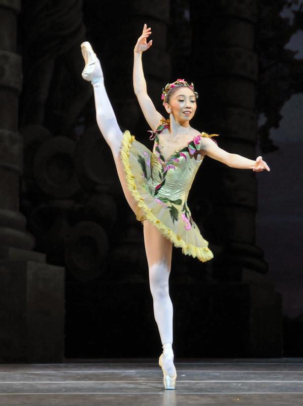 Fairy Of The Enchanted Garden (Hikaru Kobayashi)