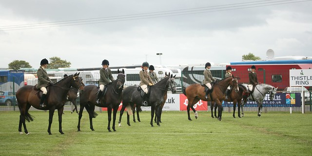 Retraining of Racehorses Final