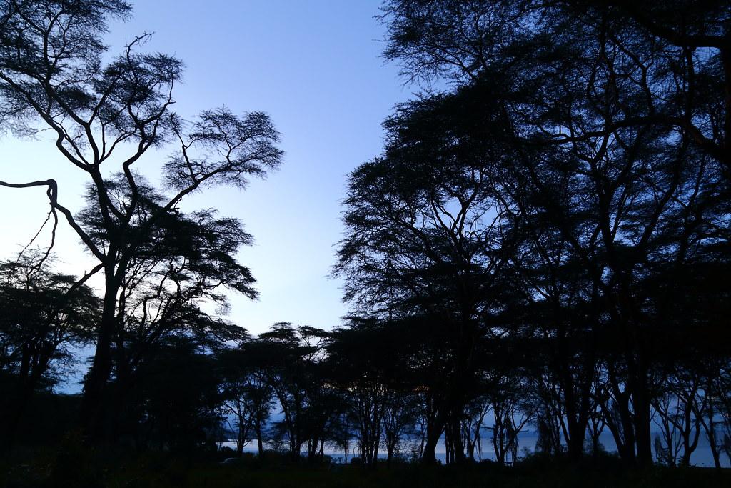 奈瓦夏湖畔黃昏。攝影:鍾坤典