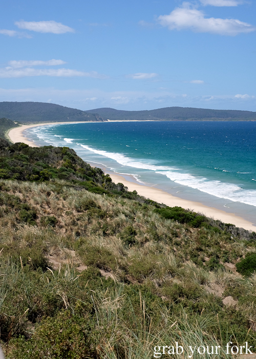 The Neck Beach on Bruny Island in Tasmania