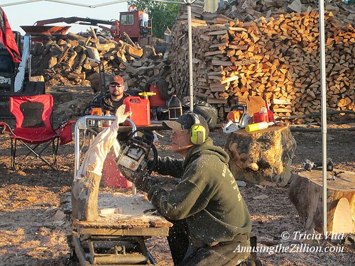 Photo album making mulch chainsaw art from recycled nyc