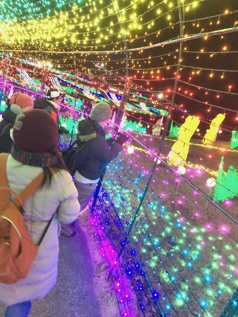 Tokyo Doitsu mura winter illumination 2016-2017 08
