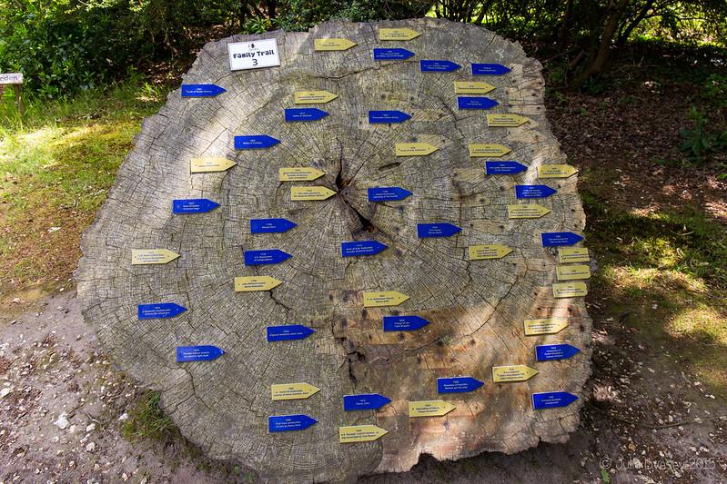 The History Tree
