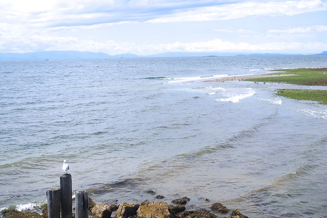 Gibsons Beach | Sunshine Coast, British Columbia