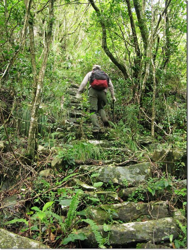登論外山途中砌石石階 3