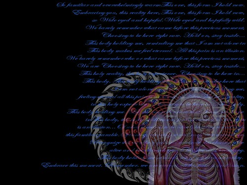 Alex Grey with parabola lyrics | A wallpaper I made for my ...