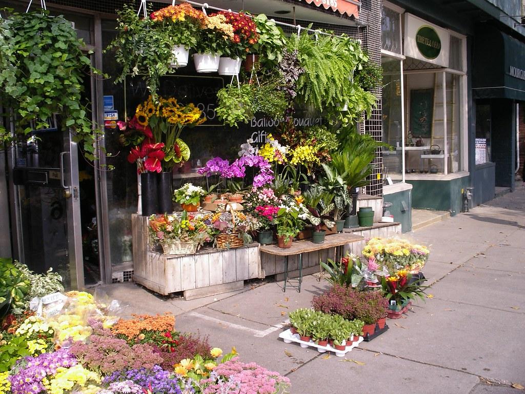 Queen Street East Cafes
