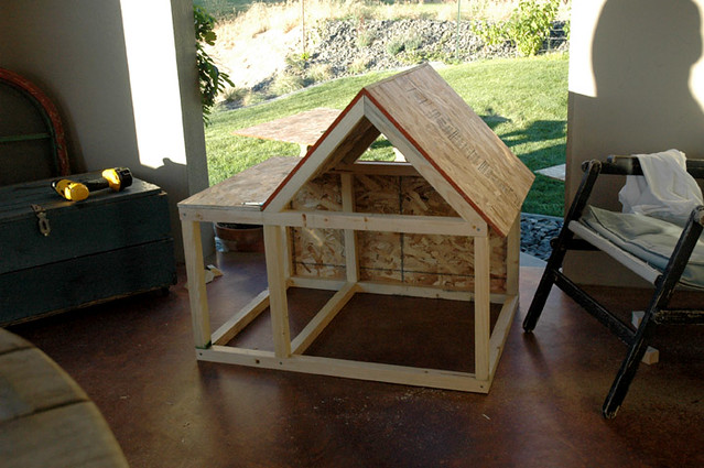 The cathouse project i am building our outdoor cat gizmo flickr the cathouse project by ttwice the cathouse project by ttwice solutioingenieria Image collections