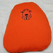 Spacehopper Camera Cushion