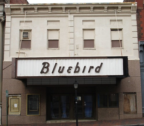 Bluebird Petersburg, VA | by Seth Gaines