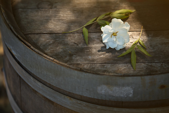 Garden - Flower & Barrel