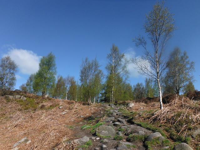 Farnhill Moor 2