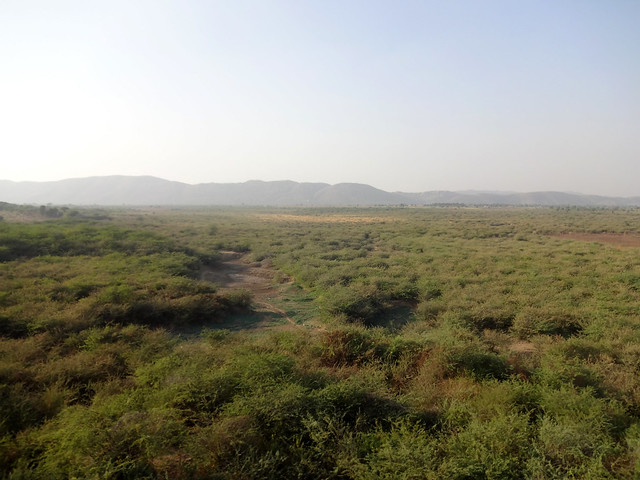 रोणा, बाणगंगा, ताला और माधोवेनी नदियों का पानी इस झील में आता था।