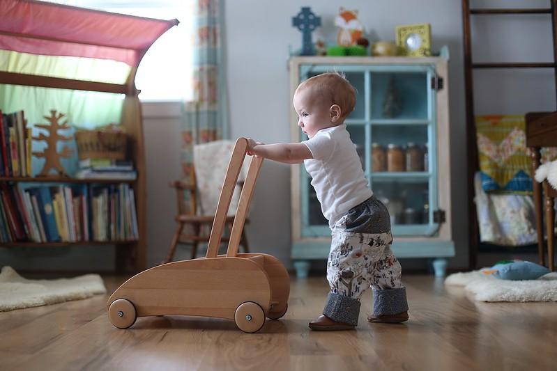 push wagon