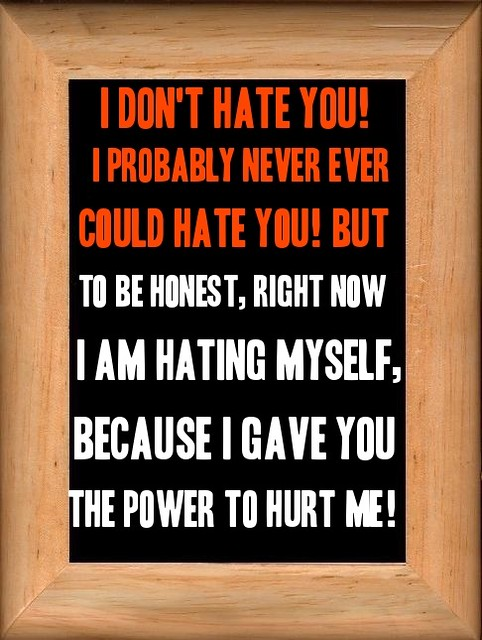 I Could Never Hate You