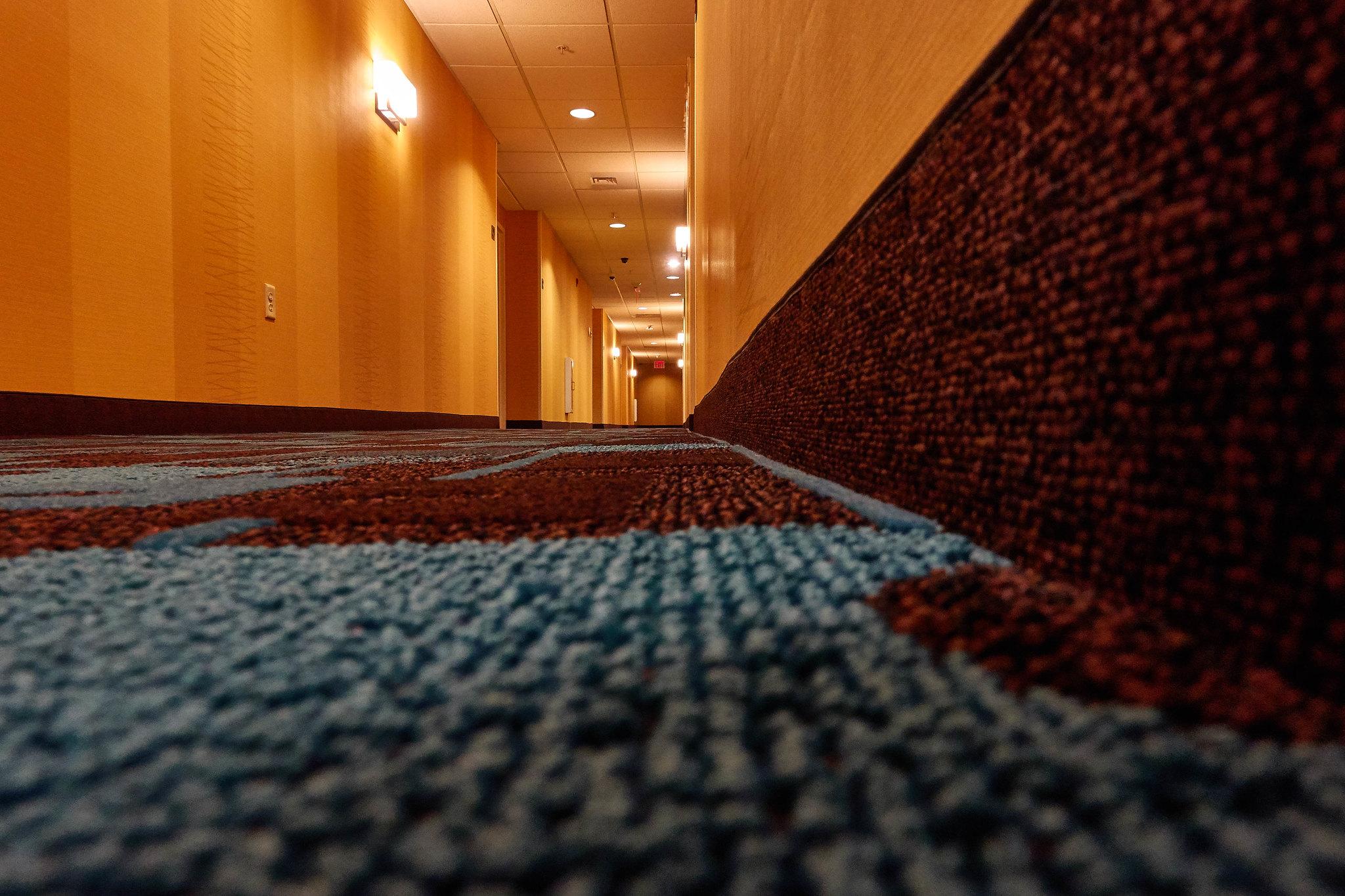 Hallway; Low Shot