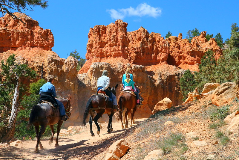 IMG_4962 Mule Ride, Bryce Canyon National Park
