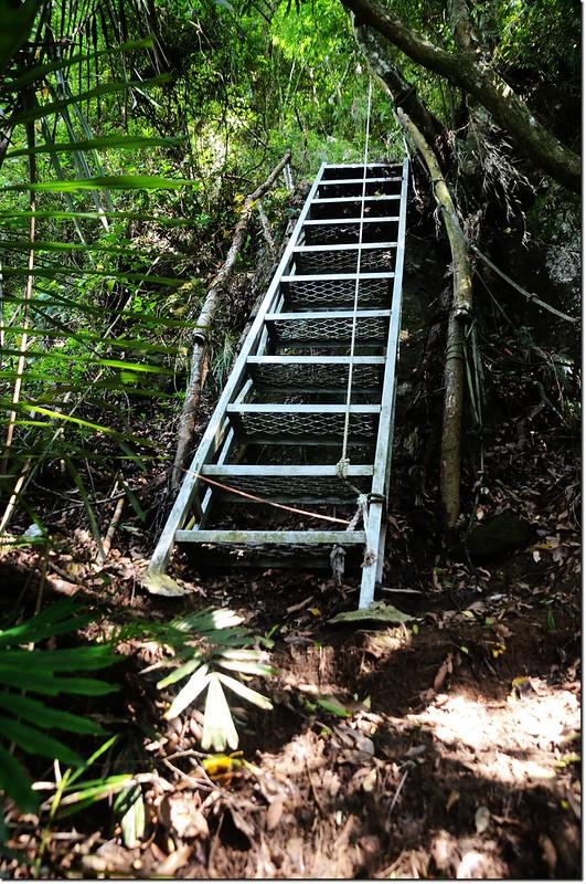 鷂婆山登山步道 2
