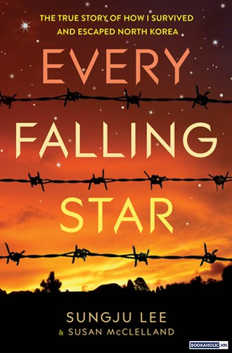 Every Falling Star - Lee Sungju