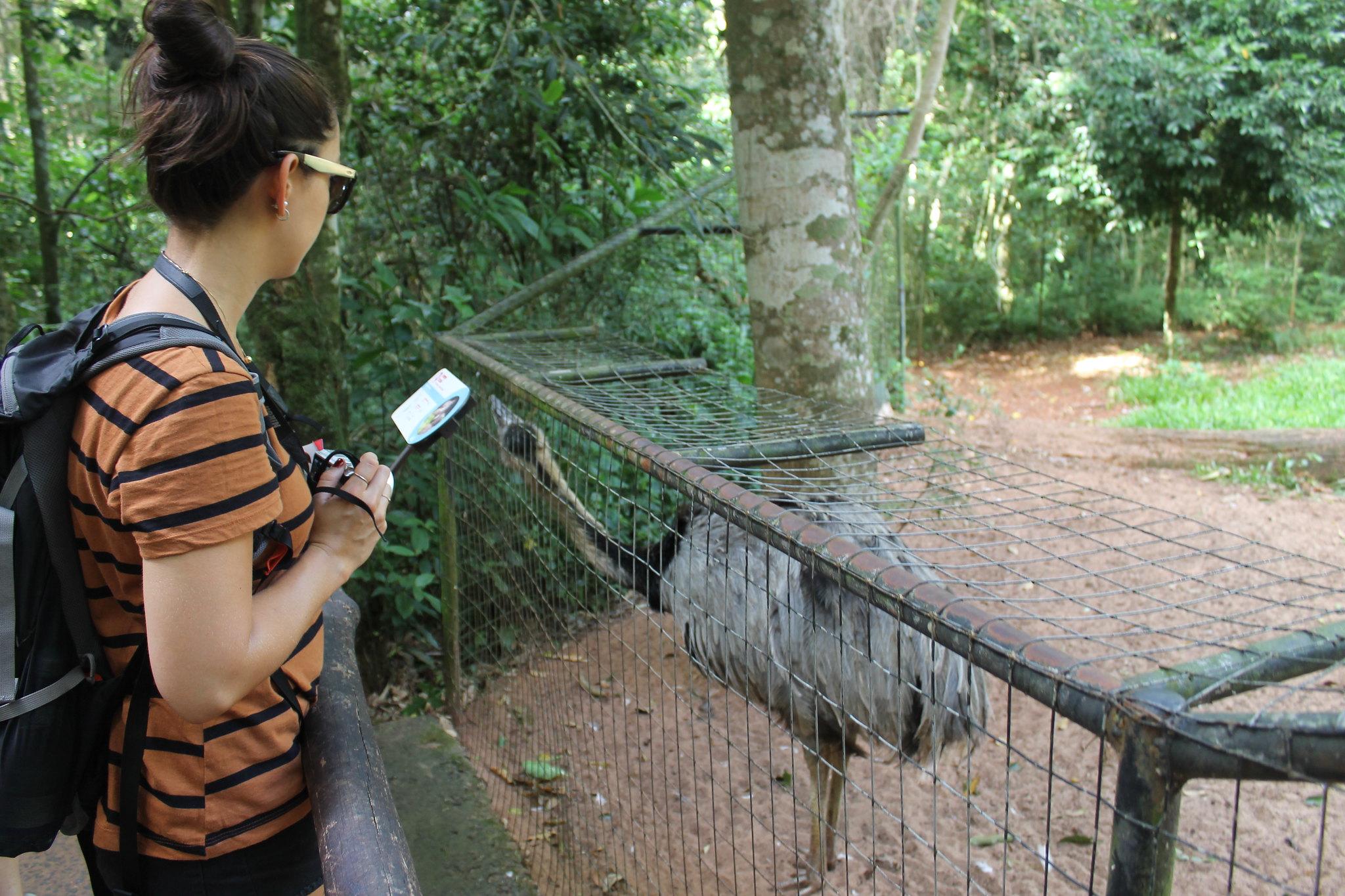 parque-das-aves15