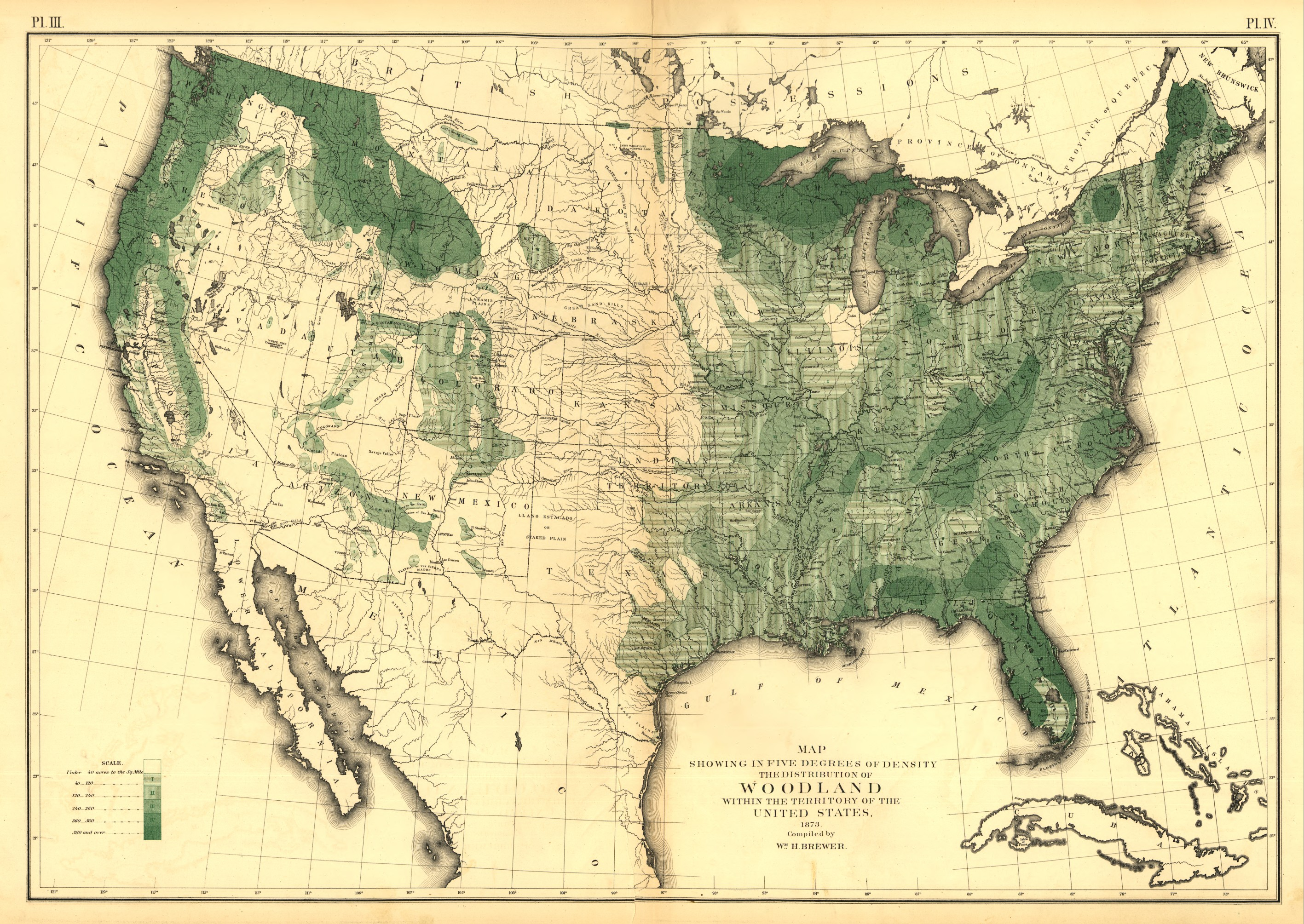 The distribution of woodland within the territory of the U.S. (1873)