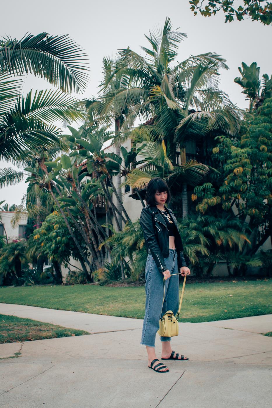 palmtrees-9