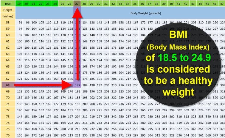 BMI body mass index chart