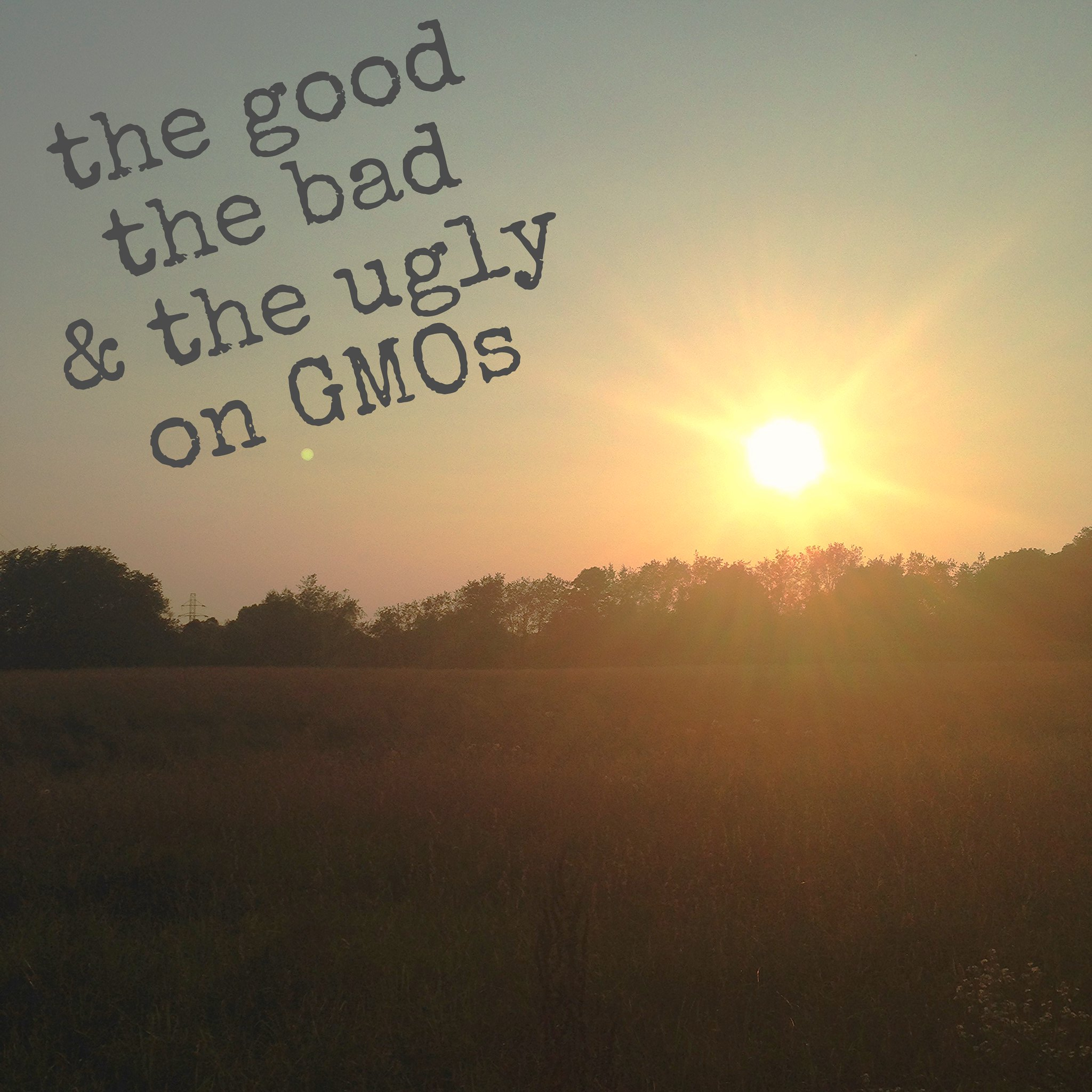 good bad and ugly on GMOs