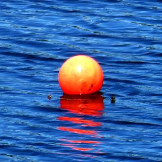 reservoir float