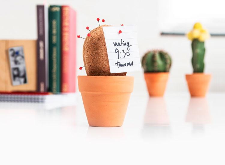 Nick-Lerwill-cork-cactus