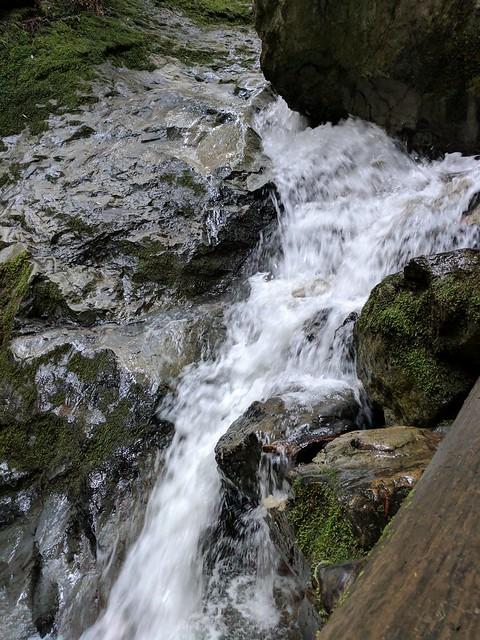Waterfall on the Steep Ravine Trail