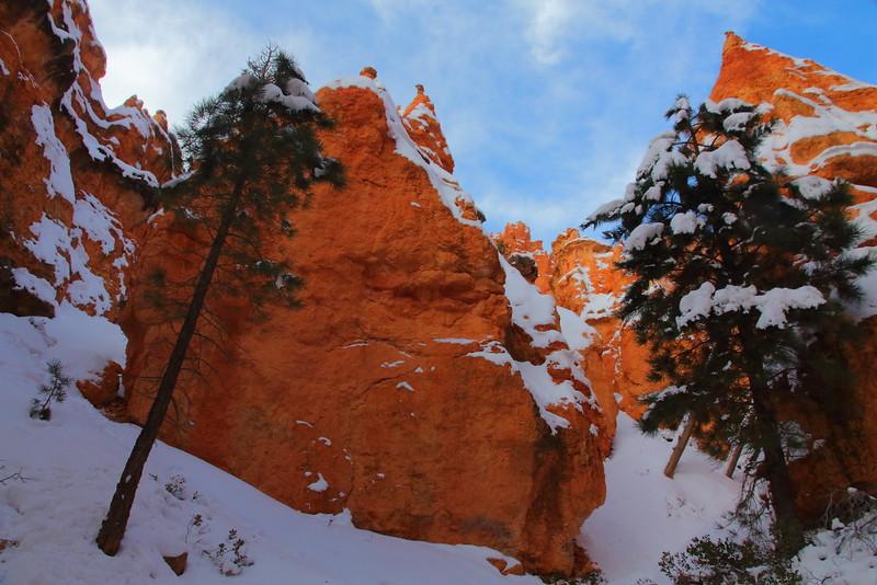 IMG_8589 Navajo Loop Trail