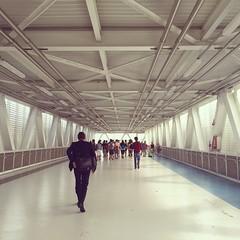 ingresso ponte tunnel