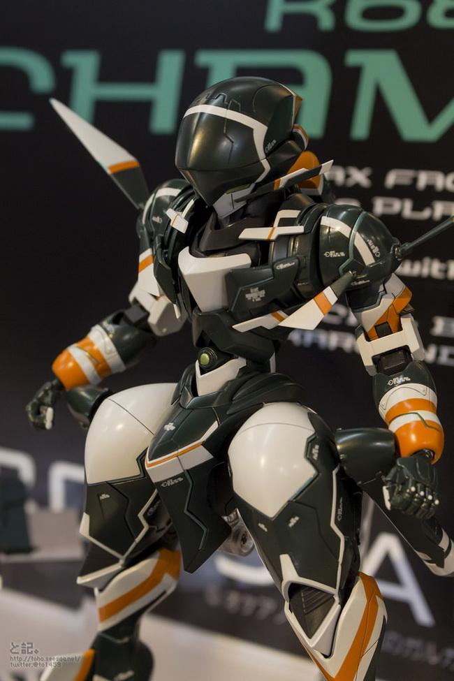 AKIBA model Fair2015_16