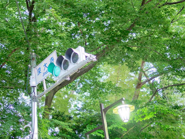 Jindaiji traffic light