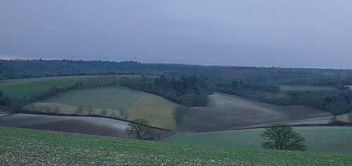 fieldpattern