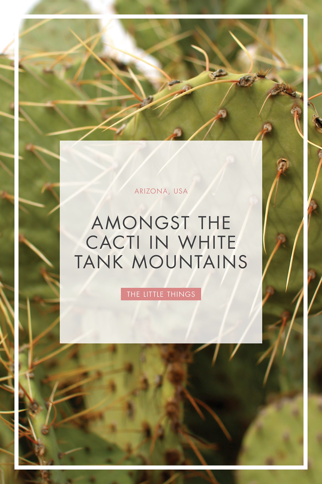 white tank mountains phoenix arizona travel blogger