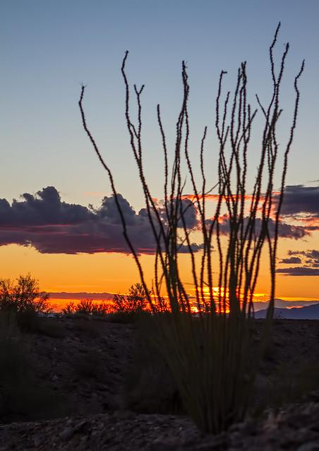 Sunset-7-7D1-012417