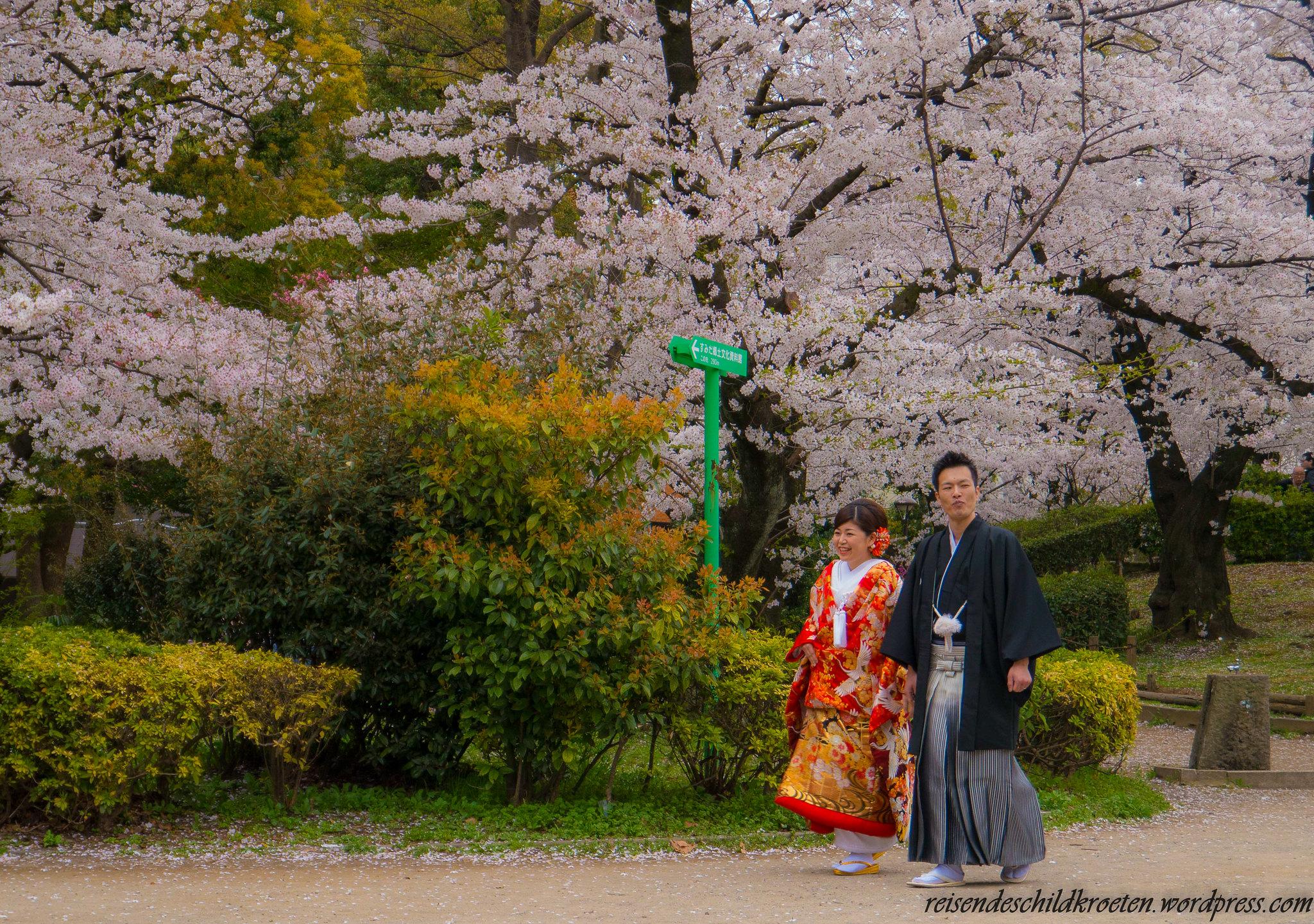 Honjo Matsuzaka-cho Park