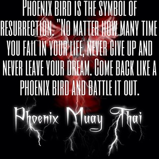 Phoenix Muay Thai Quote - Bird of Resurrection