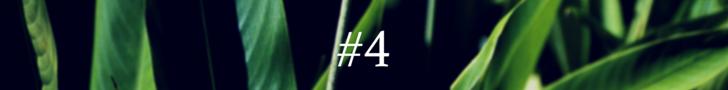 #1(3)