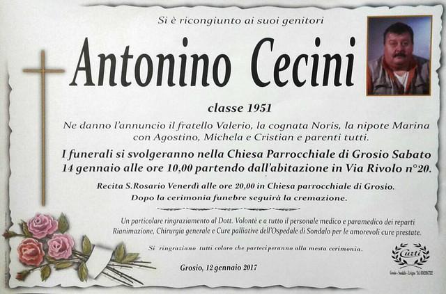 Cecini Antonino