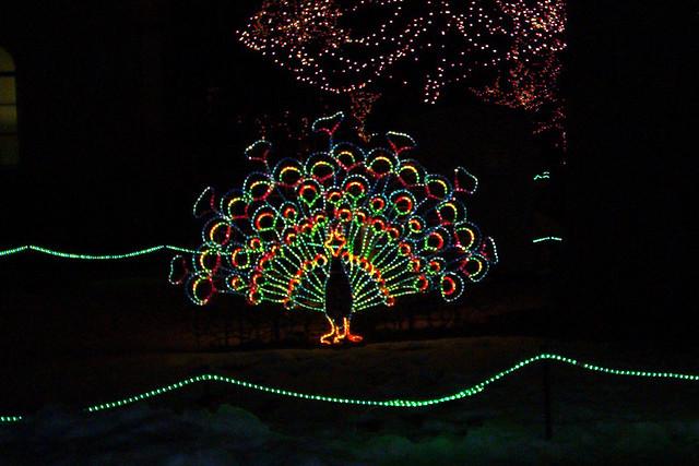 lights before christmas toledo zoo the lights before chr flickr - Riverbanks Zoo Lights Before Christmas