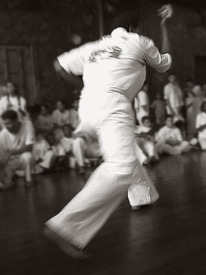 The Sporting Art of Capoeira - IX | by carf