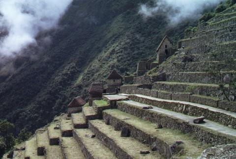 Terrace Farming Machu Pichu Peru The Incas It Seems