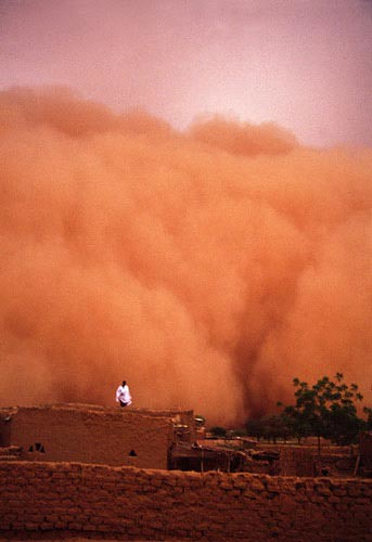 Sandstorm At The Start Of The Rainy Season Around The