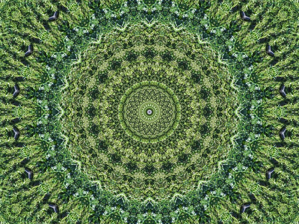 Green tribal wallpaper hd